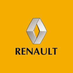 RENAULT REMOVER